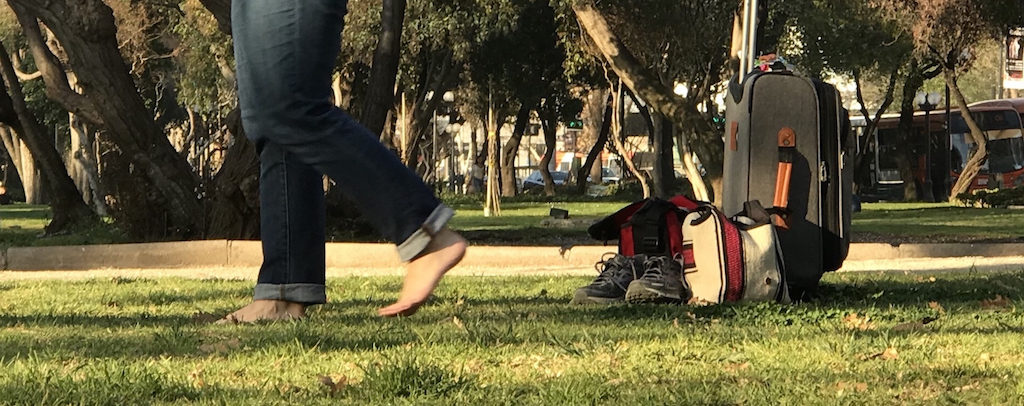 Attempting to cure jet lag by walking in grass (a.k.a. grounding or earthing) in Santiago, Chile